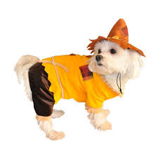 Halloween Dog Costume Scarecrow Halloween Dog Costume Halloween Scarecrow Party