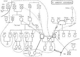 genogram a pictorial display of a person u0027s family relationships