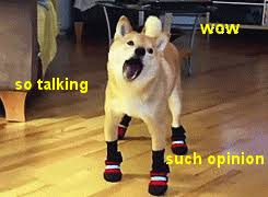 So Doge Meme - why has the doge meme seemingly attracted a more intelligent crowd