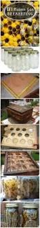diy beehive in a jar fresh honey in your backyard beehive