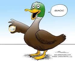 merk insights euro duck quacks duck
