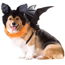pet halloween store pet costumes u0026 halloween toys