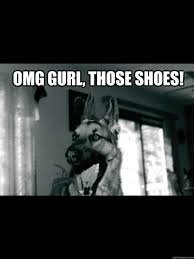 Funny German Shepherd Memes - omg gurl those shoes gay german shepherd quickmeme