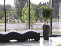 jardin interieur design végétalisation d u0027espaces professionnels solutions jardins