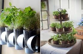 indoor kitchen garden ideas garden design garden design with indoor herb garden ideas diy