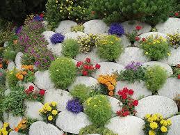 rock garden ideas sustainablepals org