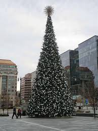 this 70 foot tree will be lit up tomorrow at 6 pm at citycenter dc