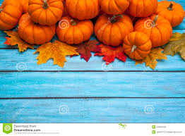 autumn thanksgiving background stock photo image 45535454