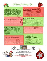 holiday pet safety tips for dog and cat owners from winslow animal
