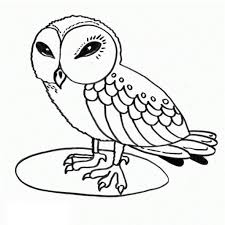 outstanding coloring pages owls graphic coloring