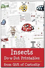 164 insect preschool theme images preschool