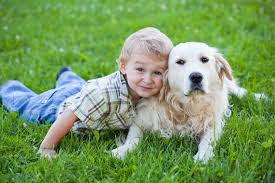 using service dogs to help kids with autism spectrum disorder