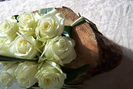 Diana Princess Of Wales Rose by White Roses For Princess Diana What Flowers For Kate The