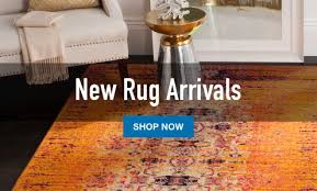 Rugs 4x6 Lowes Rugs 4x6 Collection