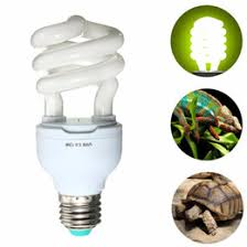 uv light bulbs nz uvb l reptile nz buy new uvb l reptile online from best