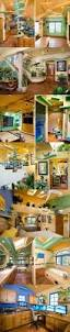 Cat Friendly Home Design 86 Best Tunnel Cat Images On Pinterest Animals Cat Stuff And