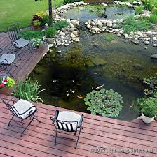 Pictures Of Backyard Ponds by 65 Best Garden Ponds Images On Pinterest Gardening Gardens And