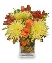 orange park florist windy autumn day bouquet in iowa park tx iowa park florist