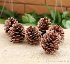 christmas nuts pine nuts christmas decorations the pine tree fruit