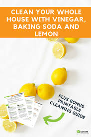 clean your whole house with vinegar baking soda and lemon sodas