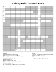 respiratory crossword template to increase knowledge loving