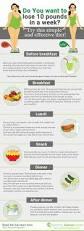 best 10 pregnancy diet plans ideas on pinterest pregnancy