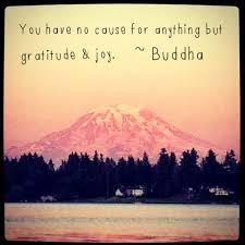 23 best images on buddha buddha buddha quote and