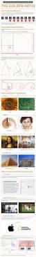 best 25 golden ration ideas on pinterest golden ratio in design