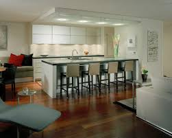 Contemporary Island Kitchen Contemporary Island Lighting Houzz