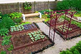 heavenly raised beds vegetable garden fresh on kids room
