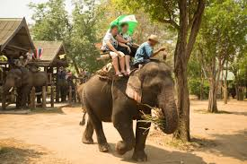Map Snap Asia by The Cruel Captive Elephant Industry Animals Used For
