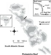 10 fevereiro 2013 ucs l ricardo s rosa phd in marine science universidade federal da