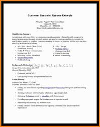 Professional Summary On Resume Examples by 9 Professional Summary On Resume Resume Language