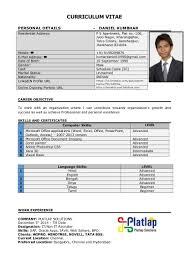 Sales Associate Resume Objective Statement Cv Language Skill Level