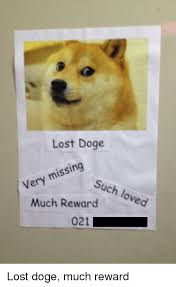 Lost Doge Meme - lost doge missing very such loved much reward 021 lost doge much