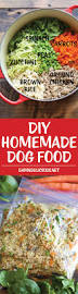 diy homemade dog food recipe homemade dog food homemade dog