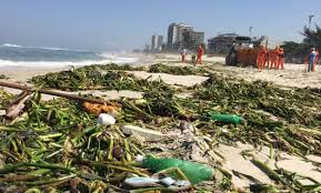 Rio Olympic Venues Now Rio U0027s Filthy Water Is Already Making Pro Athletes Sick Just Ask