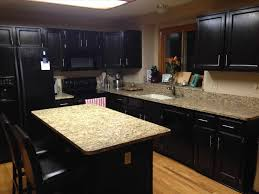 black paint for kitchen cabinets diy painted black kitchen cabinets caruba info