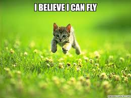 I Believe I Can Fly Meme - believe i can fly