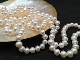 jewelry necklace pearl images Long pearl necklace genuine pearl necklace 60 inches aaa pearl jpg