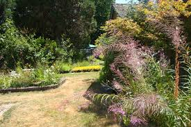 native plant society of oregon business of the week willamette gardens corvallis