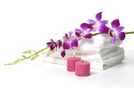 Beauty Therapy Anatomy And Physiology Beauty Therapy Diploma The Beauty Institute Athlone Ireland