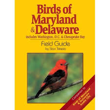 Maryland birds images Identifying species mdwildlife jpg