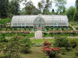 Rock Garden Darjeeling by Destination Of The Week Lloyd Botanical Garden Darjeeling