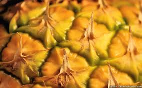 pineapple fruit wallpapers crazy frankenstein