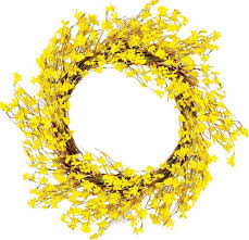 forsythia wreath worth imports 22 forsythia wreath reviews wayfair