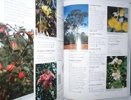 propagating australian native plants australian native plants fifth edition by wrigley john w