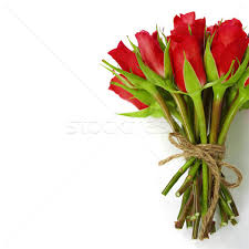Bouquet Of Roses Roses Bouquet Stock Photos Stock Images And Vectors Stockfresh