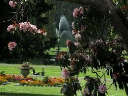 Bicton Park Botanical Gardens Bicton Park Botanical Gardens Picture Of Bicton Park Botanical