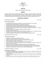 resume objective business resume objective examples warehouse supervisor frizzigame warehouse resume objective best business template